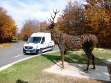 Reisemobile-von-HRZ-Beispiel-0505.jpg