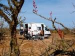 Reisemobil-Sprinter-10.jpg